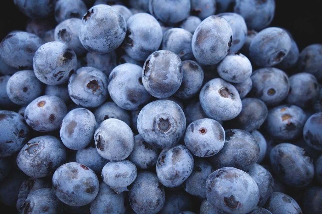 Berries anti-cancer