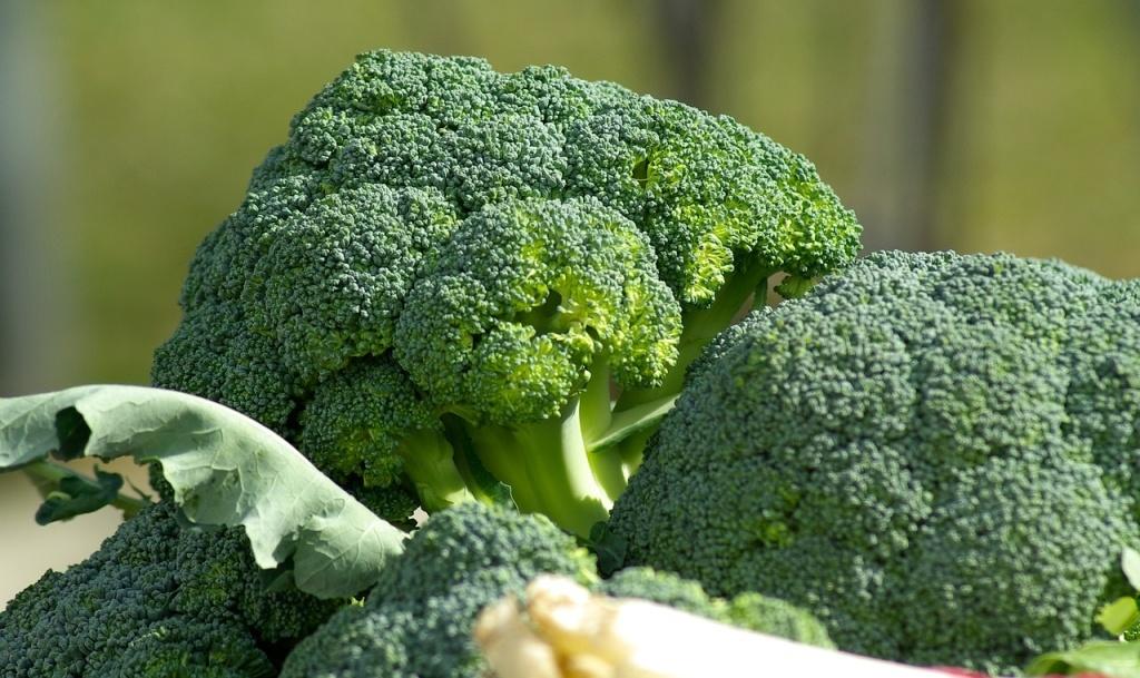 Cruciferous vegetables anti-cancer